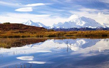 озеро, отражение, аляска, национальный парк денали, гора мак-кинли