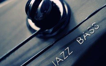 макро, гитара, гриф, струны, джаз, бас, колок