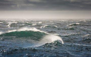 wave, storm, the bering sea, bering sea