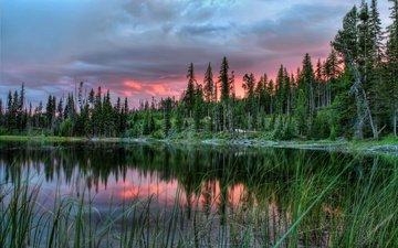 деревья, озеро, закат, пейзаж, канада, провинция альберта