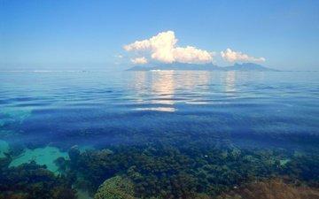 облака, море, горизонт, кораллы
