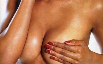 breasts,  грудь