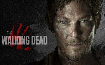 guy, zombies, the walking dead