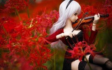 цветы, скрипка, кукла