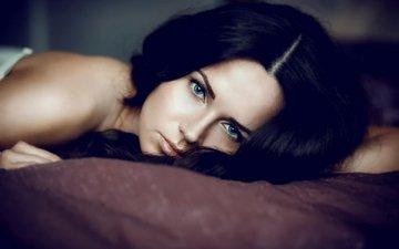 глаза, девушка, портрет, брюнетка, взгляд, модель, макияж, красотка, даша, сексапильная