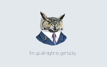 great sketch night birds, a very wise and intelligent owl. it is us, says, happy, from the night, life.