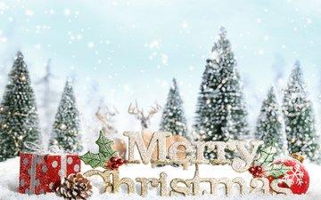 снег, орнаменты, декорация, встреча нового года, presents, счастливого рождества, новогодняя елка, белоцветник