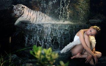 тигр, девушка, фон