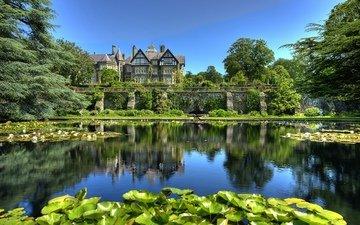 листья, парк, англия, пруд, лилии, уэльс, tyn-y-groes