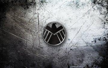 лого, беркут, метал, блака