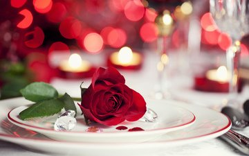 цветы, свечи, розы, красный