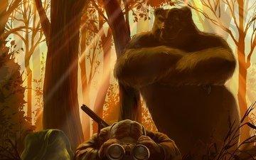 свет, лес, взгляд, медведь, охотник, бинокль