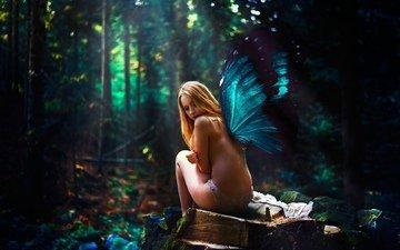 лес, девушка, фэнтези, крылья, фея, тайна, уединение, обнаженная, чаща