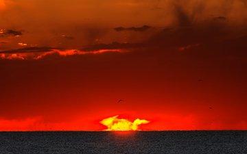 небо, восход, солнце, море, горизонт, рассвет, вспышка