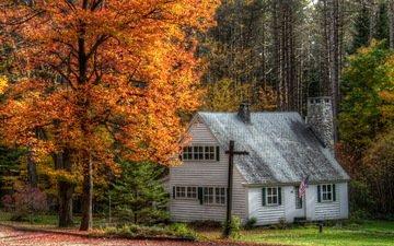 деревья, лес, осень, дом, флаг