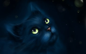 арт, рисунок, мордочка, усы, взгляд, живопись, черный кот