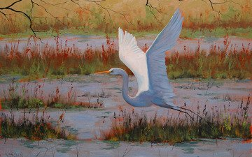 art, flight, bird, painting, heron