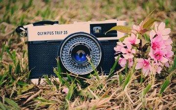 настроение, фотоаппарат, камера