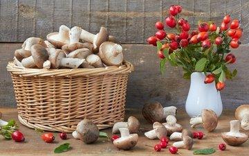 грибы, шиповник, корзина, боярышник
