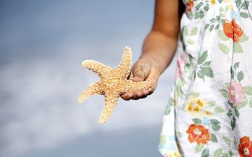 рука, девушка, морская звезда