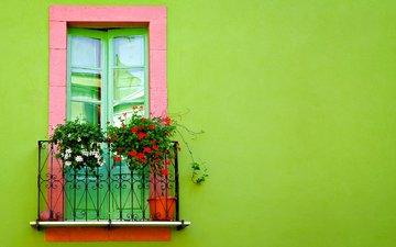 цветы, фон, здание, балкон