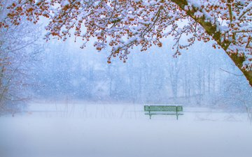 зима, парк, скамейка, снегопад