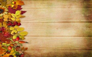 листья, доски, плоды, декор