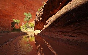 река, скалы, ручей, каньон, ущелье