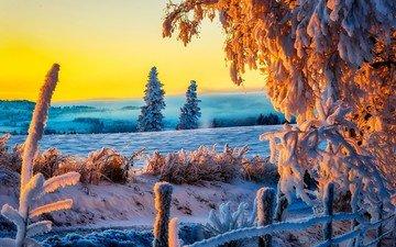 небо, дорога, деревья, снег, природа, лес, закат, зима, пейзаж, тропинка, белая, неба, деревь, на природе, красива, классная, ницца, автодорога