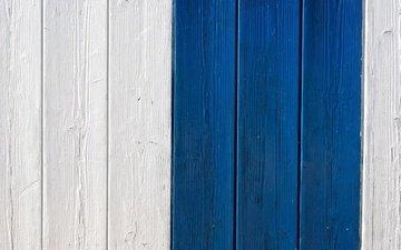синий, доска, забор, белый, краска