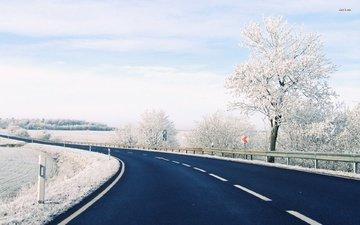снег, зима, гора, автодорога, дерево