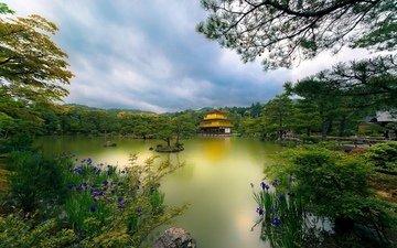 храм, япония, киото, японии, золотой павильон