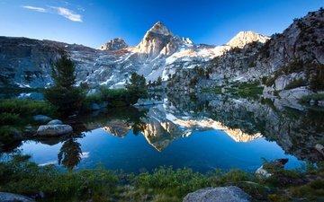 вода, лес, гора, голубая, неба, лейка, дерево