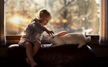 белый, ребенок, кролик, окно, мальчик, детство, доброта