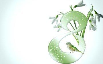 птичка, 8 марта, подснежники, светлый фон, для милых дам