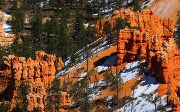 деревья, скалы, снег, пейзаж, каньон, сша, штат юта