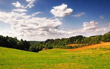 небо, трава, облака, деревья, холмы, пейзаж