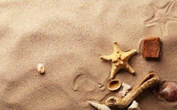 макро, песок, ракушки, морская звезда