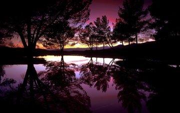 деревья, вода, вечер, озеро, закат, отражение, силуэты