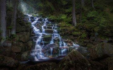 вода, река, скалы, камни, лес, ручей, водопад, поток, германия, ступени, каскад