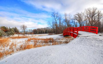 небо, деревья, снег, зима, парк, мост
