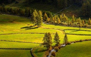 дорога, деревья, река, природа, поле, склон