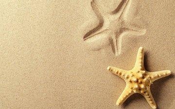 песок, пляж, след, отпечаток, морская звезда