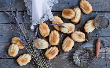 лаванда, сладкое, печенье, выпечка, anna verdina, мадлены, madeleins