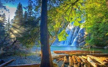 деревья, вода, озеро, природа, лес, пейзаж, водопад, бревна