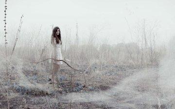 девушка, лук, охота, стрелы
