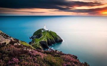 цветы, природа, закат, пейзаж, море, маяк, горизонт