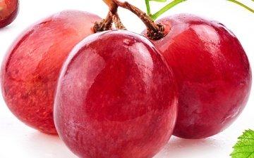 макро, виноград, красный, ягоды, берри, краcный