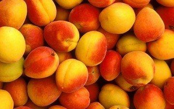 фрукты, абрикосы