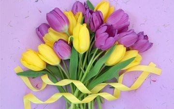 цветы, букет, тюльпаны, лента, жёлтая, тульпаны, цветы, парное, лиловая